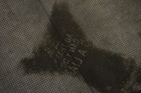 Sweat Angel.